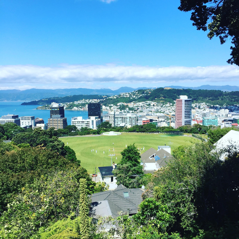 Wellington: A blustering bureaucracy and culture haven